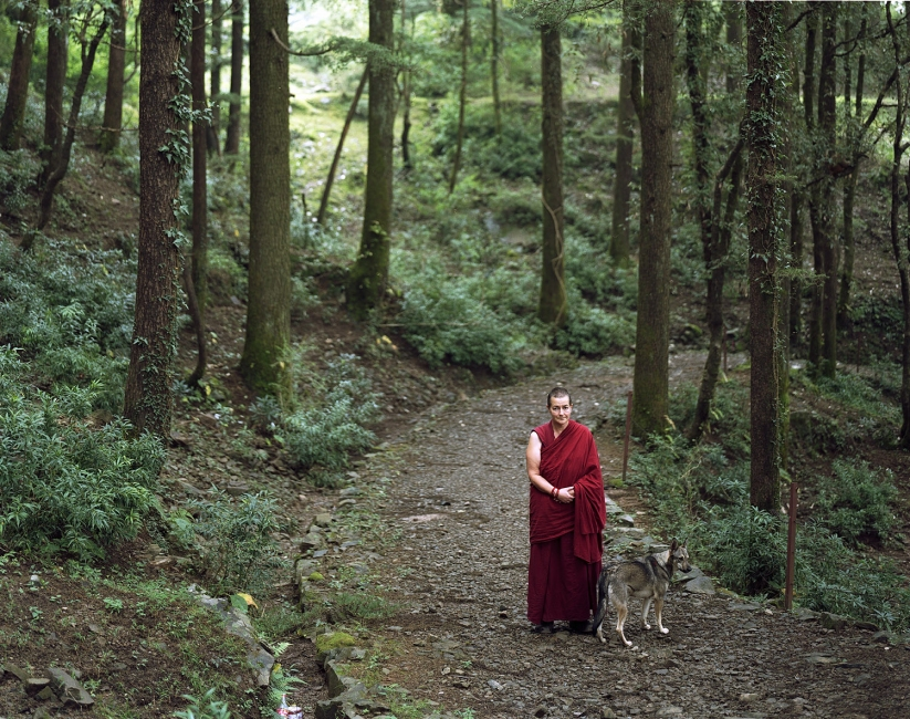 <b>The Searchers (Part II)</b> American Buddhist nun after a 3 month meditation retreat (McLeod Ganj, India
