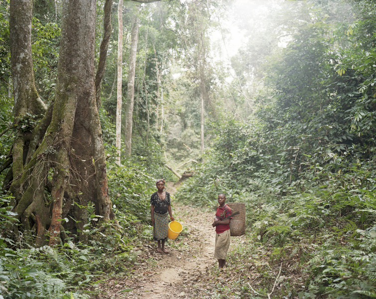 <b>Republic of Dust</b> Pygmy women on the way to fish in the river, Northern Gabon
