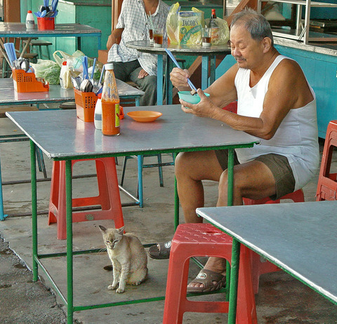 people & pets Old Man and Cat