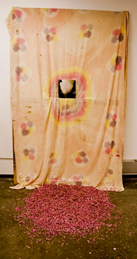 Shanna Waddell Sheness Society  Sheet, Found Photo, Flower Petals
