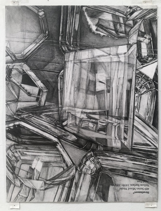 """Within Without"" 2009-present  pencil on paper"