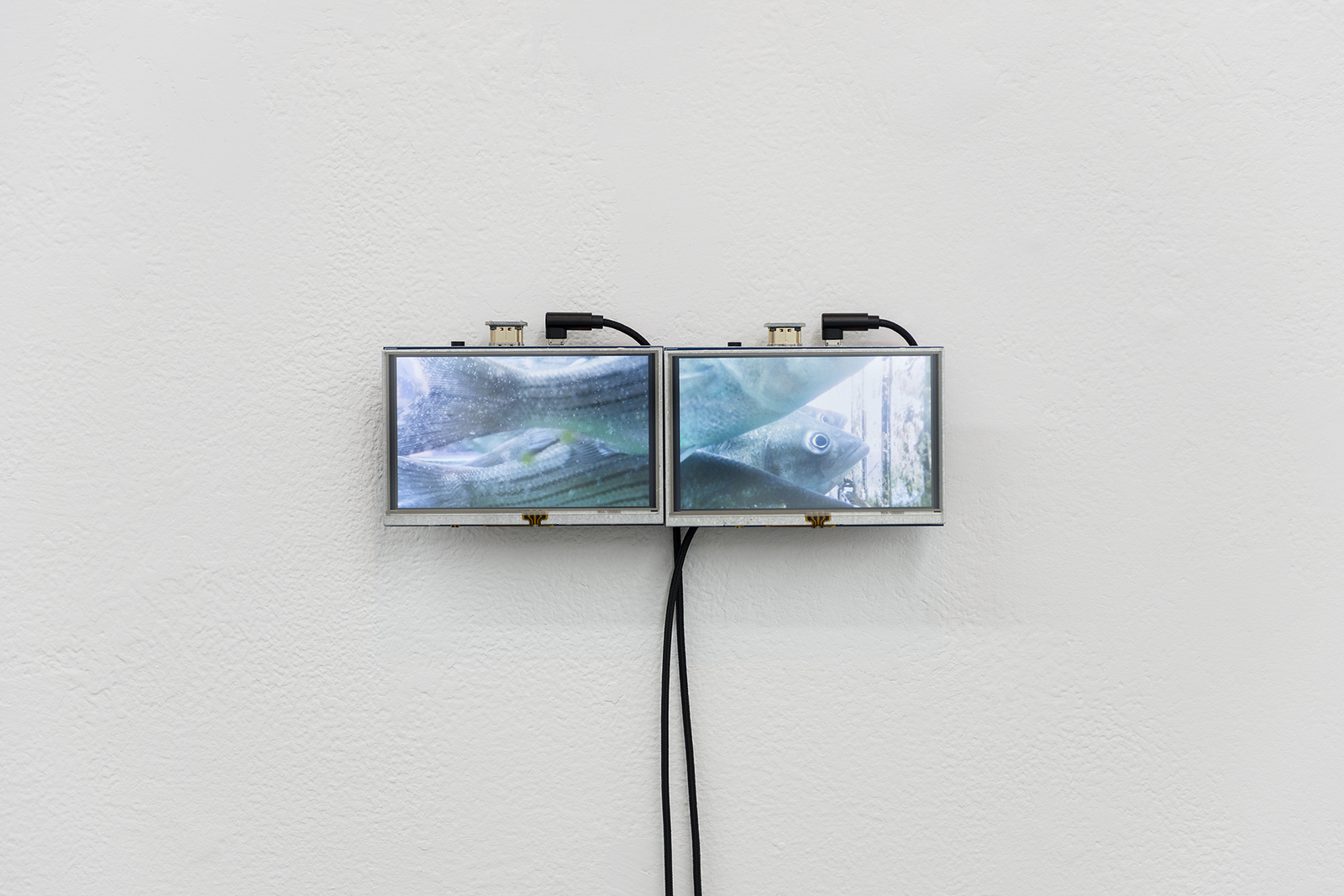 SIANG-JEN YANG  楊翔任 Jau Seoi 游水 Mixed media, Single-channel video loop, silent