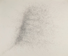 SIANG-JEN YANG  楊翔任 Drawings / Paintings  繪畫 Graphite on Paper