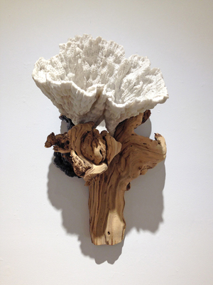Sideshow Tracy Heneberger Grape vine root, coral, mushrooms, epoxy, shellac