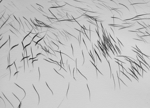 Sound Drawing 22 (detail)