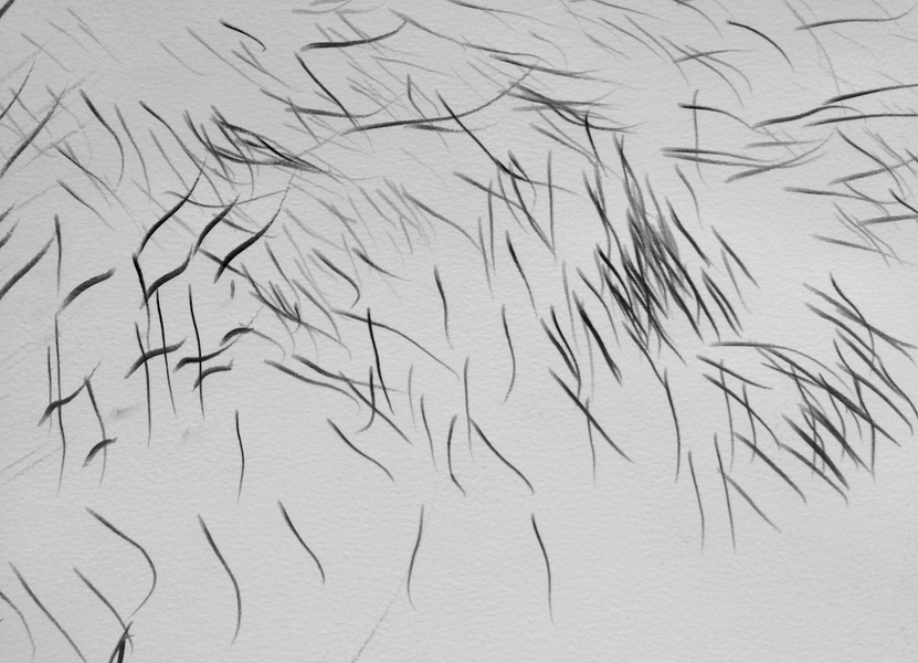 The Sound of Drawing Sound Drawing 22 (detail)