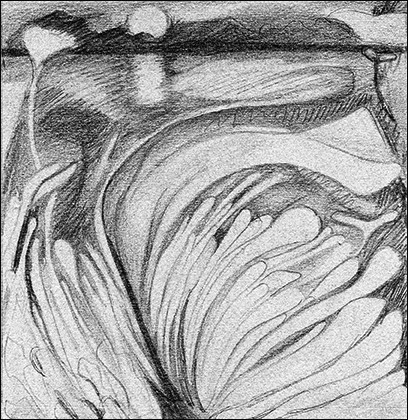 Black Rock 1974-1980 Estuaerial Sketch, #4