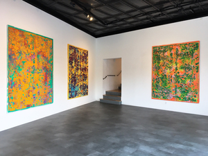 Stephen Maine       Residue paintings (2014-20) Five Points Gallery, Torrington, CT