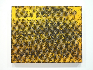 Stephen Maine       Halftone paintings (2012-13) acrylic on panel