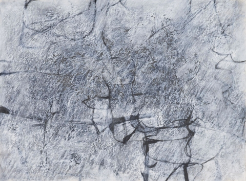 Painting/Drawings 2010 Emergence and Dissipation 2010 #2