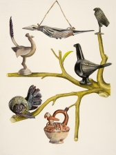 SUE JOHNSON Curious Nature of Objects, Pitt Rivers Museum, Oxford, UK (2010-12) Gouache, watercolour and color pencil on paper