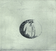 Susan Jane Walp Prints etching with relief ink roll
