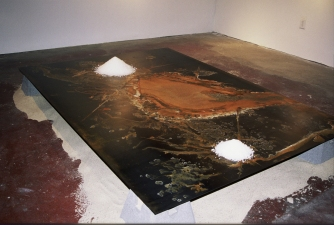Tamara Reynolds Topography Cold rolled steel, Texas salt, beach sand, concrete, lumber
