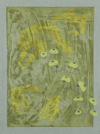 Tammy Nguyen Works on Paper intaglio with colored pencil and chine-collé on paper