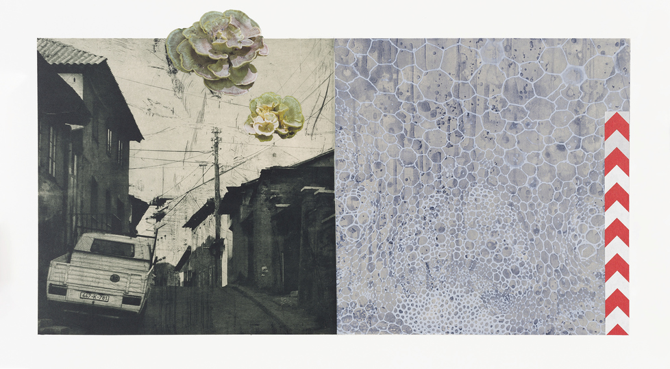Tanja Softić Night Blooms 2019 photogravure, aquatint, inkjet print; chine collé