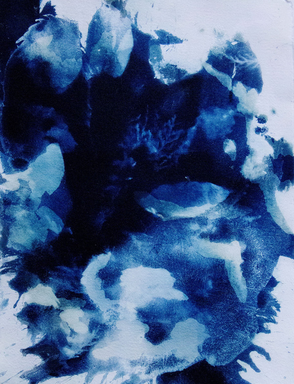 Cyanotypes Abstract #4