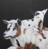 ANIMALS oil on linen