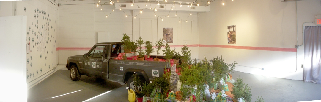 "Installations of Exhibitions  ""Picea Glauca"""