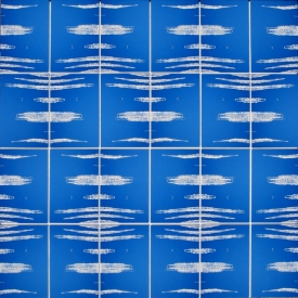 Tina Seligman Counterpoints (2009) digital pigment prints on Hahnemuhle rag, Unryu, block  printing ink, museum board on canvas