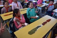 Tongji Philip Qian Third Grade