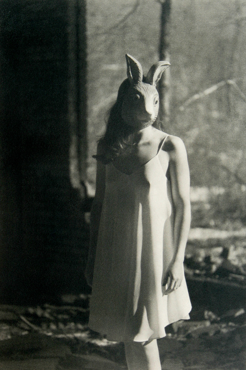 White Rabbit B&W Gum Bichromate print over Cyanotype