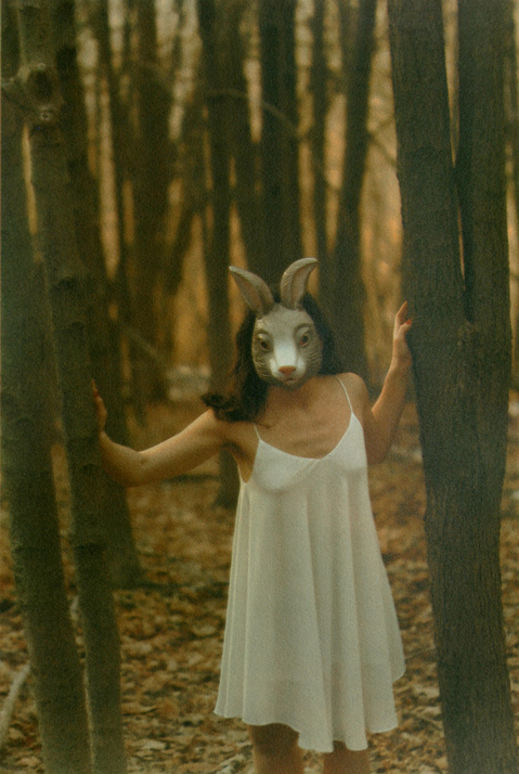 White Rabbit Untitled 4