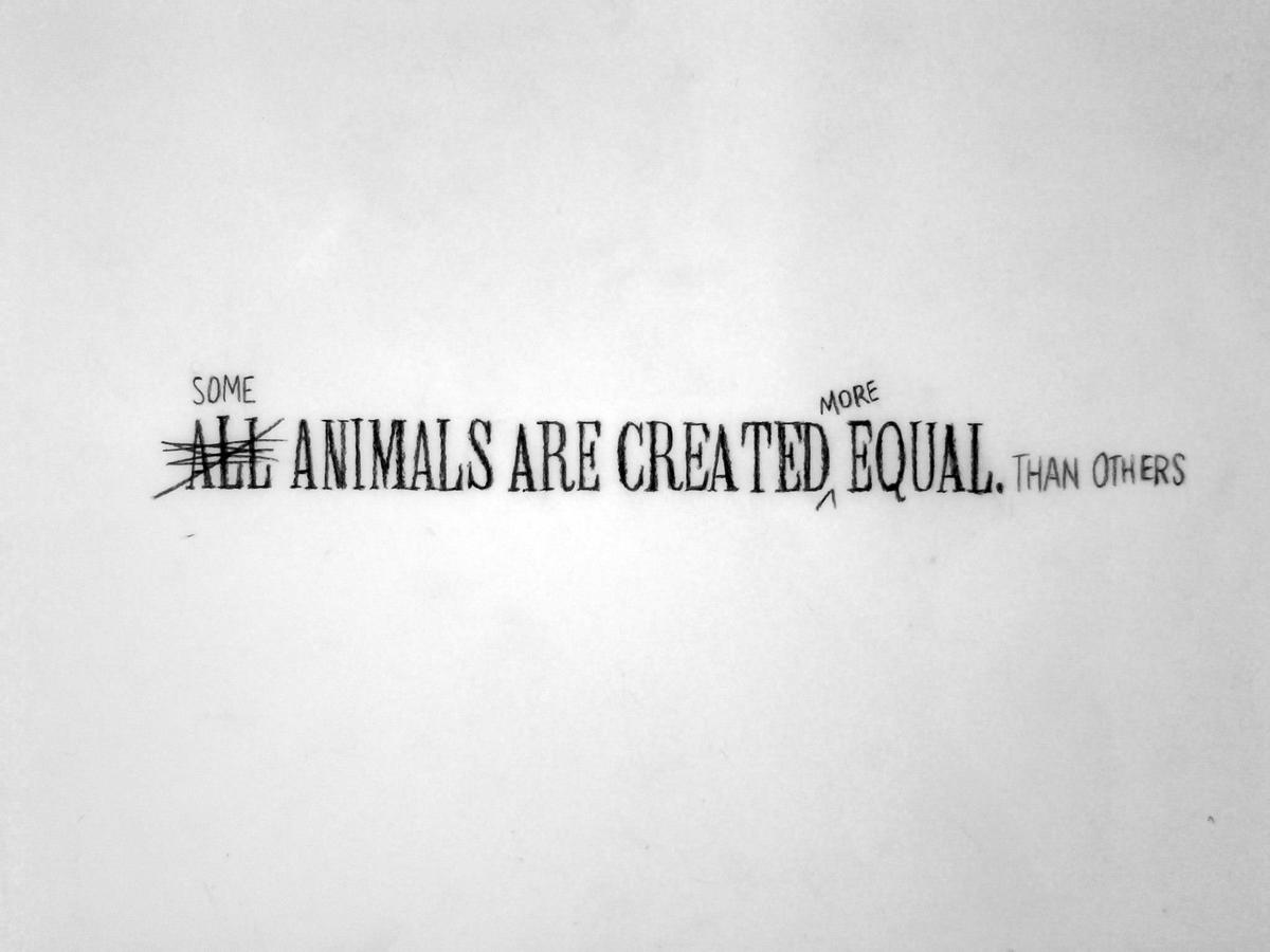 PREVIOUS  Some Animals Are Created More Equal Than Others (diptych)