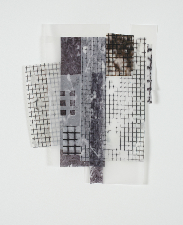 Mitchell Visoky Mixed Media Vellum, photographs on paper