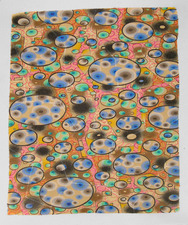 Warren Kloner drawings colored pencil on gouache ground