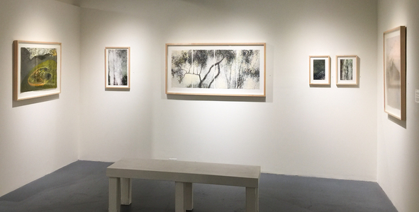 Willa Cox Exhibition Views