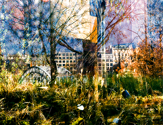 View Collection: Cityscapes Jardin au musee du Quai Branly I, Paris, France