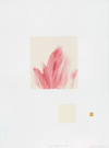 To any happy Flower   Monotype on Thai Kozo paper, chine collé on Somerset satin paper, gold leaf
